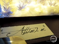 ATTIMI M